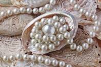Pearls canstockphoto6111406